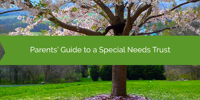 Parents' Guide to a Special Needs Trust